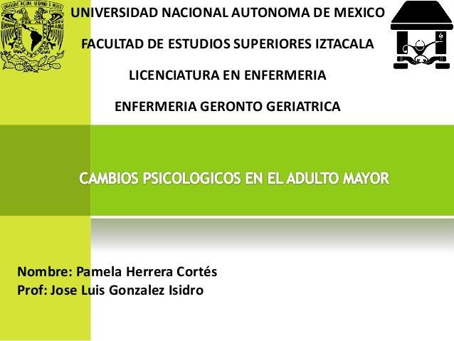 UNIVERSIDAD NACIONAL AUTONOMA DE MEXICO  FACULTAD DE ESTUDIOS SUPERIORES IZTACALA LICENCIATURA EN ENFERMERIA  ENFERMERIA G...