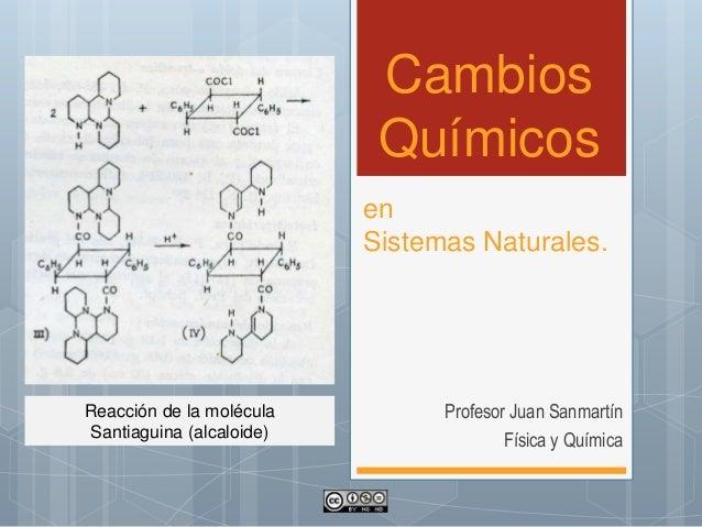 Cambios Químicos Profesor Juan Sanmartín Física y Química en Sistemas Naturales. Reacción de la molécula Santiaguina (alca...
