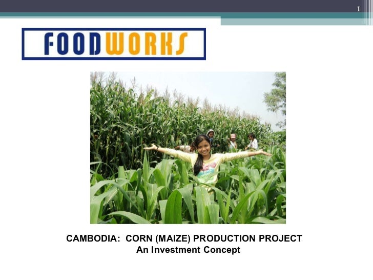 CAMBODIA:  CORN (MAIZE) PRODUCTION PROJECT An Investment Concept