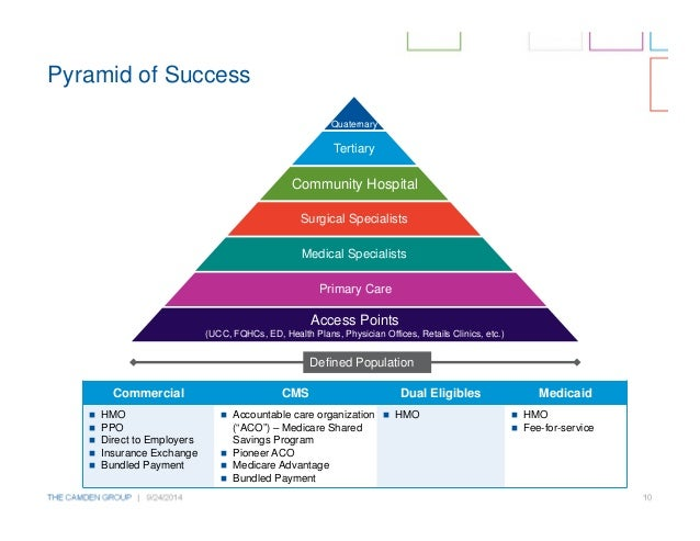 dual pyramid form of organization in health care What are the different types of health care organizations you may also have to deal with claim forms and reimbursement when you go out-of-network.