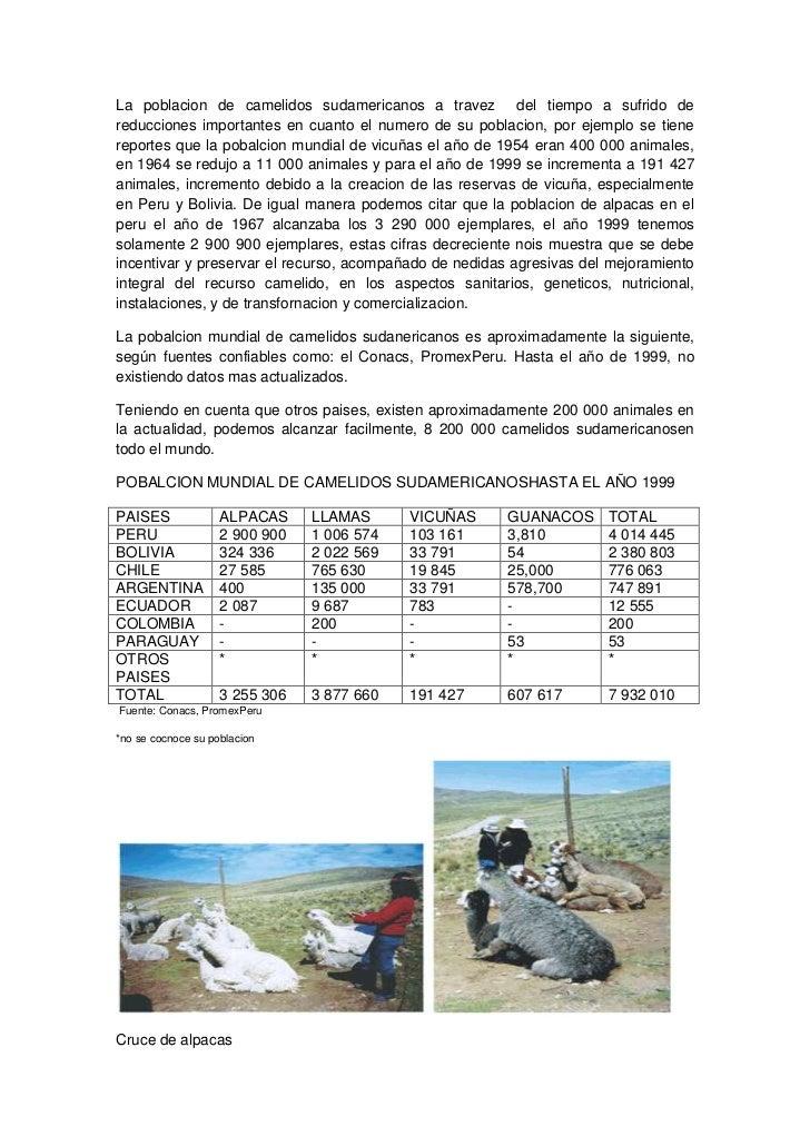 La poblacion de camelidos sudamericanos a travez del tiempo a sufrido dereducciones importantes en cuanto el numero de su ...