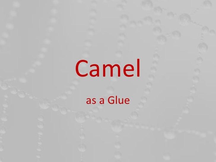 Camelas a Glue