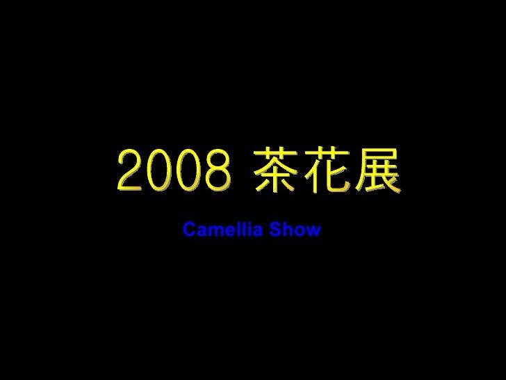2008 茶花展 Camellia Show