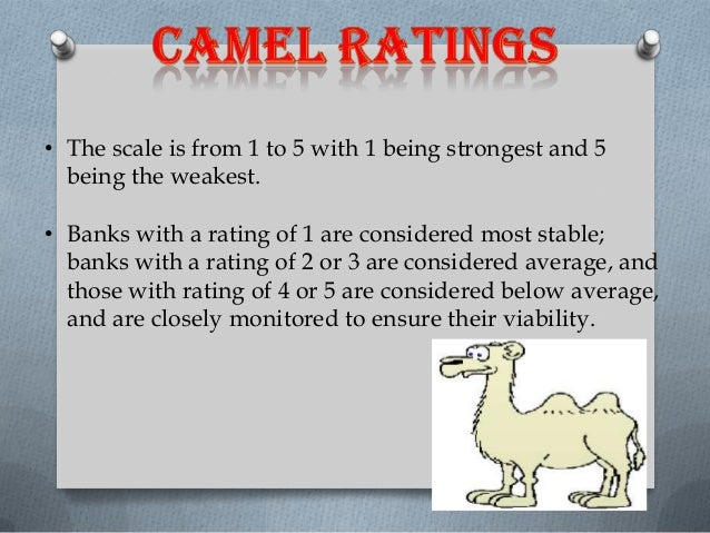 camel rating About aeris ratings  and liquidity—often referred to as a 'camel' assessment  the aeris rating scale changed to a star system for impact performance.