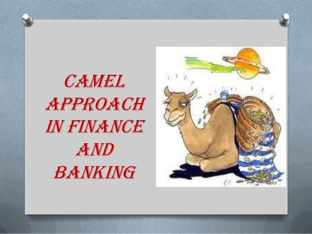 camel rating in banking Performance of banking industry in bangladesh: insights of camel rating syed moudud-ul-huq school of management, huazhong university of science and technology.
