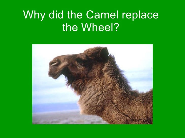 Why did the Camel replace the Wheel?