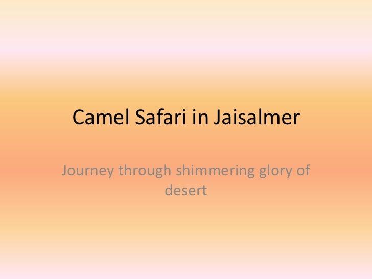 Camel Safari in JaisalmerJourney through shimmering glory of              desert