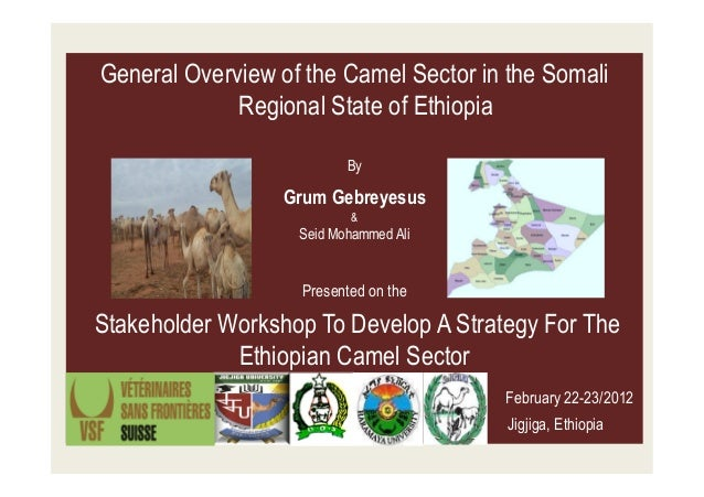 General Overview of the Camel Sector in the Somali             Regional State of Ethiopia                          By     ...