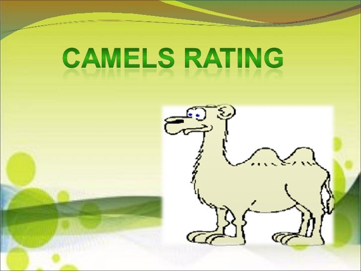 camel rating report on ab bank Since the public is denied access to the official camels bank ratings, 3rd parties have to piece together proprietary ratings using publicly information like quarterly stock reports and fdic filings for instance, bankrate offers their proprietary safe & sound® ratings for free.