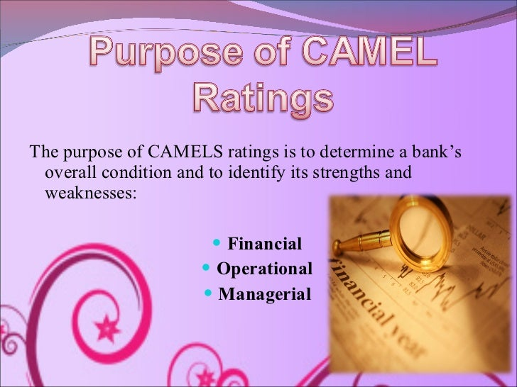 camel rating in banking The camel rating system in banking supervision a case study uyen dang arcada university of applied sciences international business.
