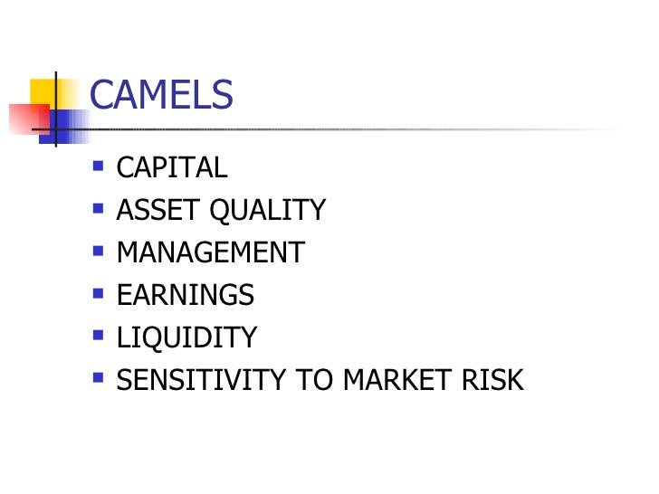 CAMELS   CAPITAL   ASSET QUALITY   MANAGEMENT   EARNINGS   LIQUIDITY   SENSITIVITY TO MARKET RISK