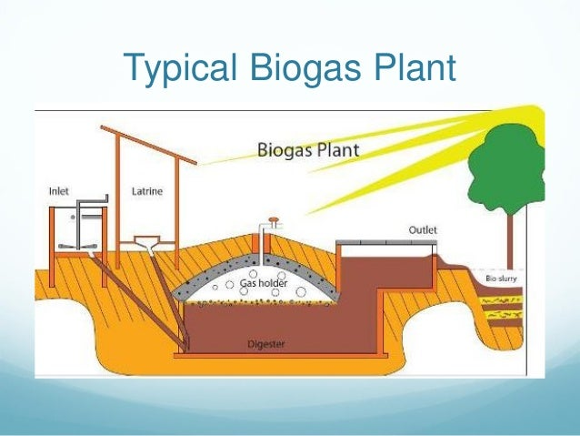 Cameroon biogas plants