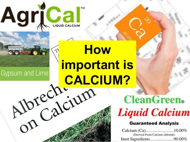 How important is CALCIUM?