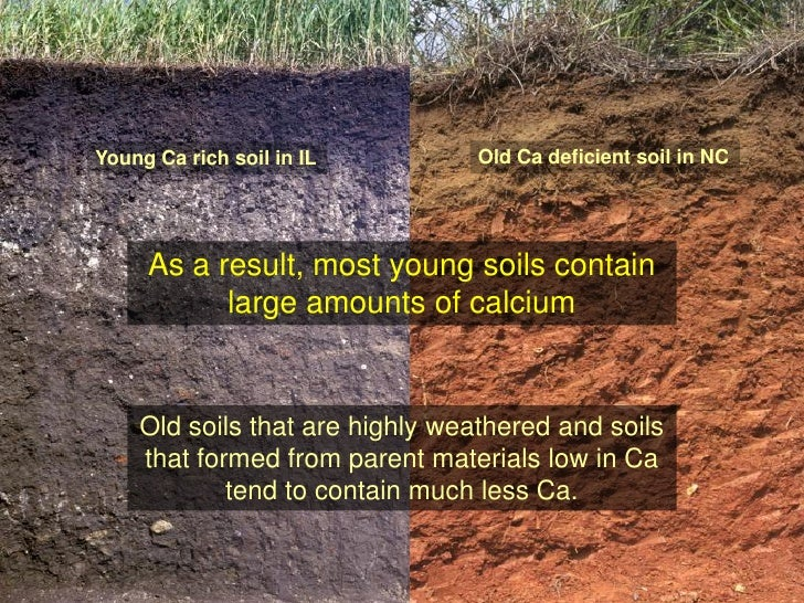 Science and management of ca and mg for Soil young s modulus