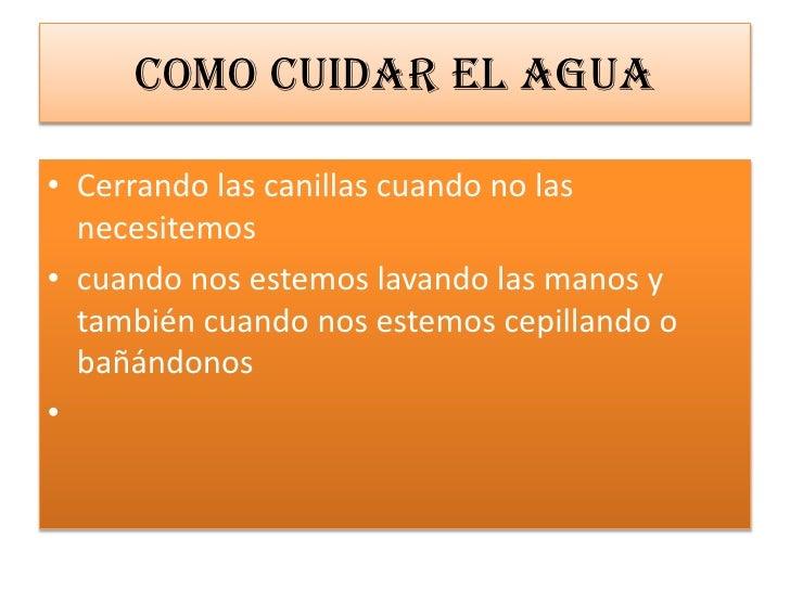 Cami Slide 3