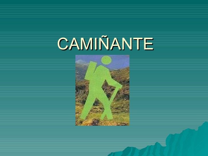 CAMIÑANTE