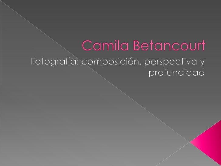 Camila Betancourt<br />Fotografía: composición, perspectiva y profundidad<br />