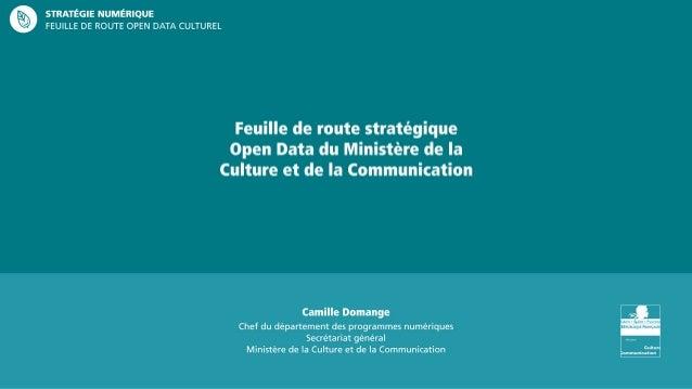 Camille Domange Strategie Numerique