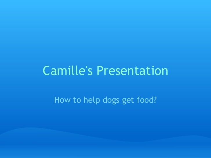 Camille's Presentation How to help dogs get food?