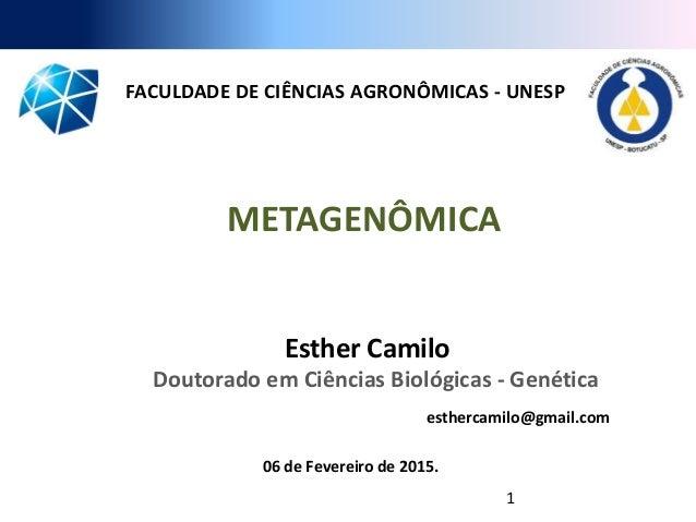 METAGENÔMICA 06 de Fevereiro de 2015. FACULDADE DE CIÊNCIAS AGRONÔMICAS - UNESP Esther Camilo Doutorado em Ciências Biológ...
