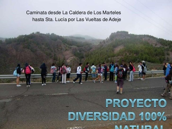 Caminata desde La Caldera de Los Marteles  hasta Sta. Lucía por Las Vueltas de Adeje