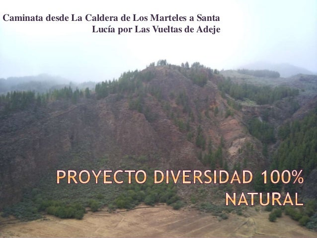 Caminata desde La Caldera de Los Marteles a Santa Lucía por Las Vueltas de Adeje