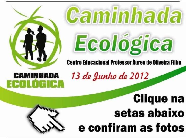 Caminhada ecológica   cepaof - 13 de junho de 2012