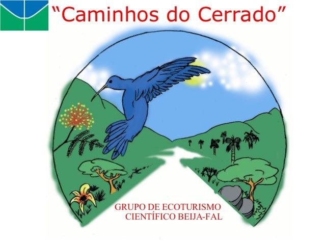 """GRUPO DE ECOTURISMO CIENTÍFICO BEIJA-FAL """"Caminhos do Cerrado"""""""