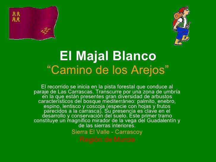 """El Majal Blanco """"Camino de los Arejos"""" El recorrido se inicia en la pista forestal que conduce al paraje de Las Carrascas...."""