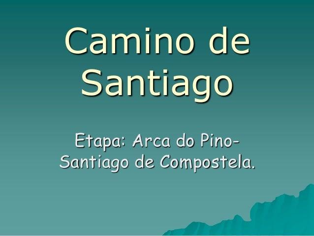 Camino de Santiago Etapa: Arca do Pino- Santiago de Compostela.