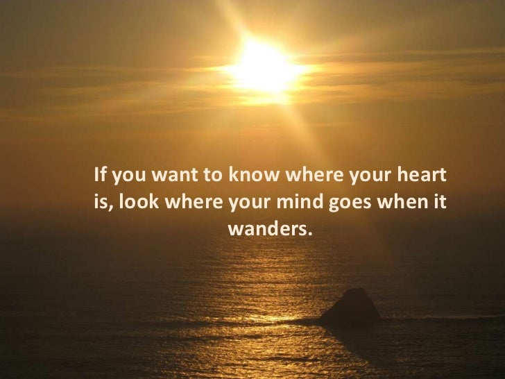 If You Want To Know Where Your Heart Is Look Where Your: Camino De Santiago- Solvitas' Impressions