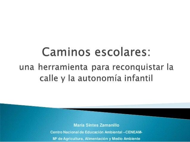 María Sintes Zamanillo  Centro Nacional de Educación Ambiental –CENEAM-M  º de Agricultura, Alimentación y Medio Ambiente