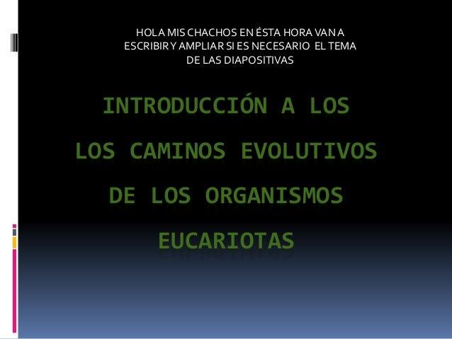 INTRODUCCIÓN A LOS LOS CAMINOS EVOLUTIVOS DE LOS ORGANISMOS EUCARIOTAS HOLA MIS CHACHOS EN ÉSTA HORAVANA ESCRIBIRY AMPLIAR...
