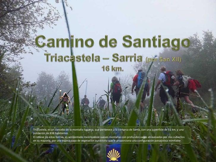 Triacastela, es un concello de la montaña luguesa, que pertenece a la comarca de Sarria, con una superficie de 51 km. y un...