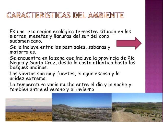 Es una eco region ecológica terrestre situada en las sierras, mesetas y llanuras del sur del cono sudamericano. Se la incl...