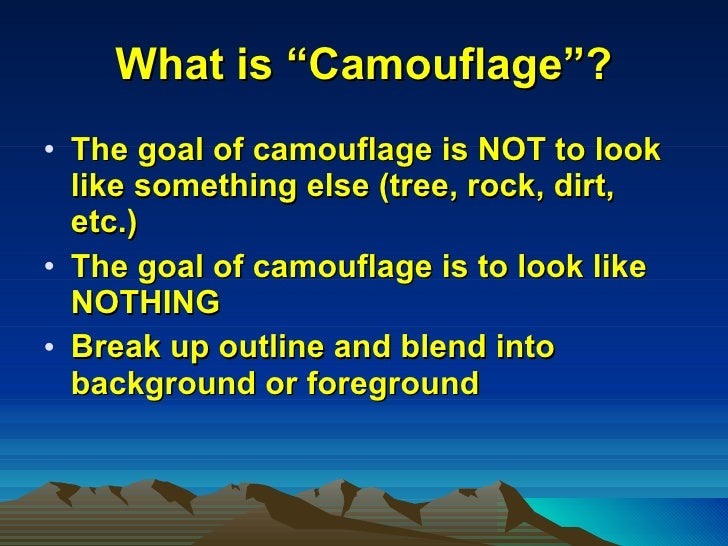 Camouflage for the patriot Slide 3
