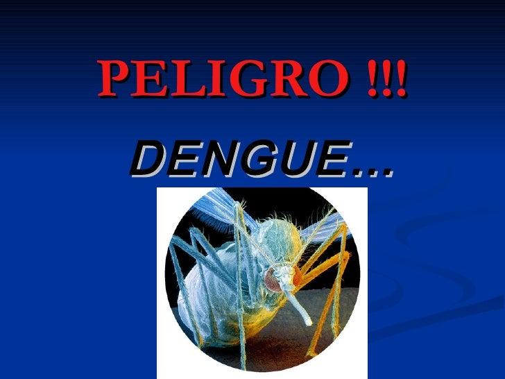 PELIGRO !!!  DENGUE…