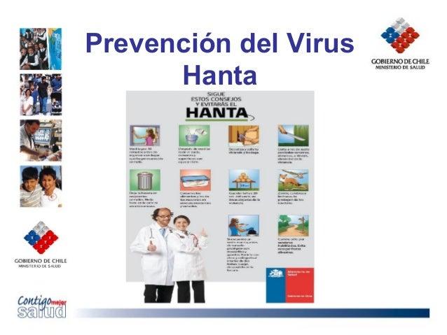 Prevención del VirusHanta