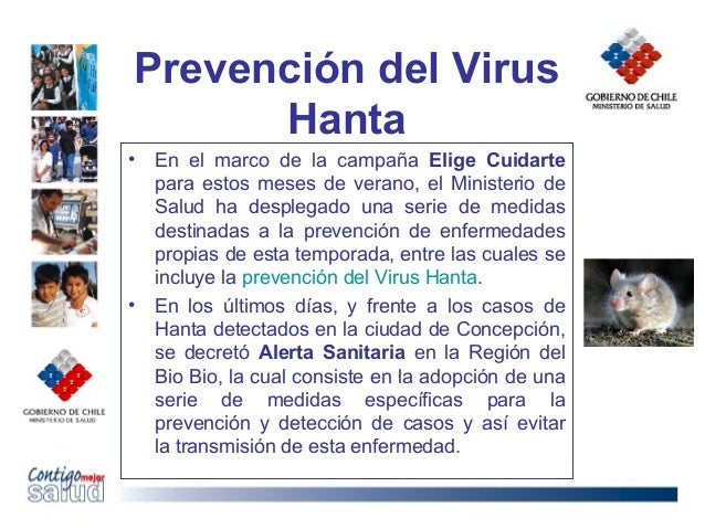 Prevención del VirusHanta• En el marco de la campaña Elige Cuidartepara estos meses de verano, el Ministerio deSalud ha de...
