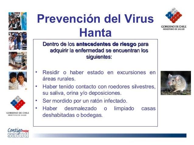 Prevención del VirusHantaDentro de losDentro de los antecedentes de riesgoantecedentes de riesgo paraparaadquirir la enfer...