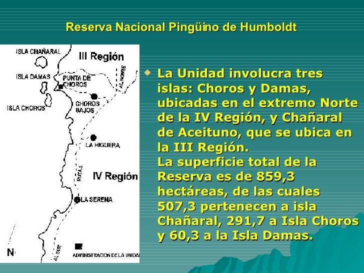 Reserva Nacional Pingüino de Humboldt  <ul><li>La Unidad involucra tres islas: Choros y Damas, ubicadas en el extremo Nort...