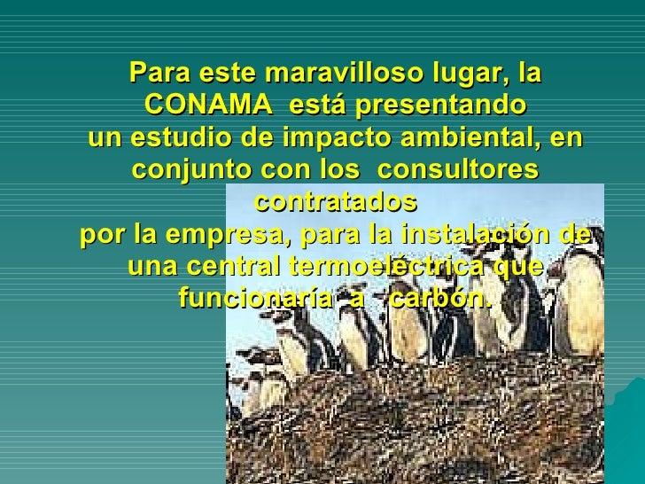 Para este maravilloso lugar, la CONAMA  está presentando un estudio de impacto ambiental, en conjunto con los  consultores...