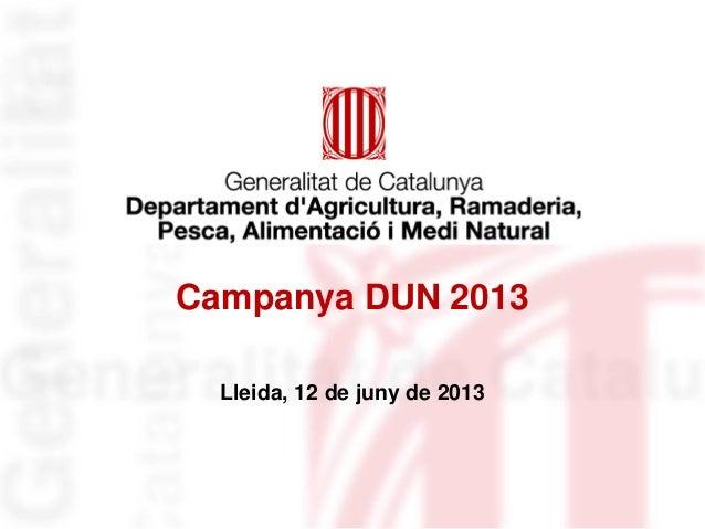 Campanya DUN 2013Lleida, 12 de juny de 2013