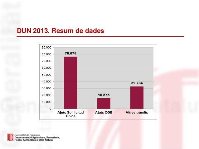 DUN 2013. Resum de dades