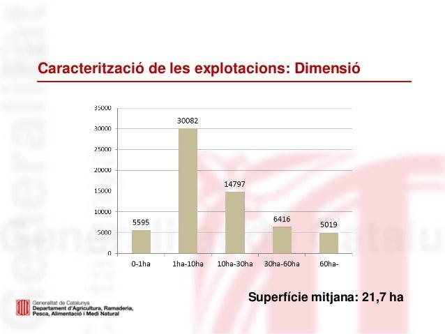 Caracterització de les explotacions: DimensióSuperfície mitjana: 21,7 ha