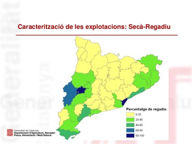 Caracterització de les explotacions: Secà-Regadiu