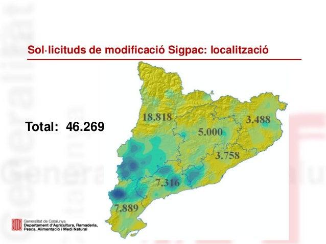 Sol·licituds de modificació Sigpac: localitzacióTotal: 46.269