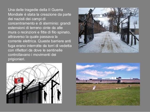 omosessuali nei campi di concentramento Cava de' Tirreni