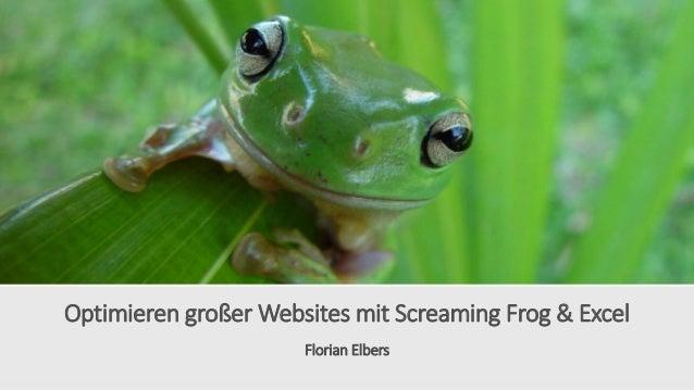 Florian Elbers Optimieren großer Websites mit Screaming Frog & Excel
