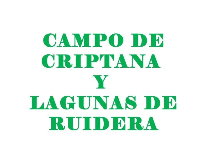 CAMPO DE CRIPTANA     YLAGUNAS DE  RUIDERA